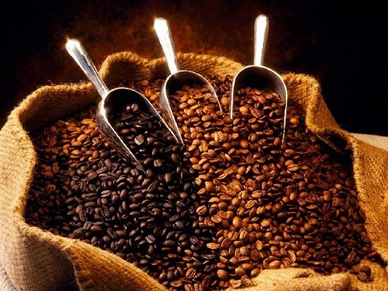 best coffee brends from kenya