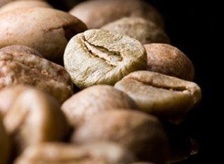 Robusta bean coffee