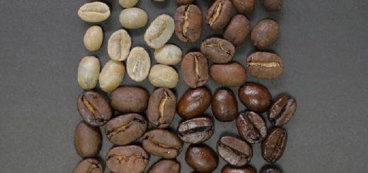 low caffeine arabica coffee