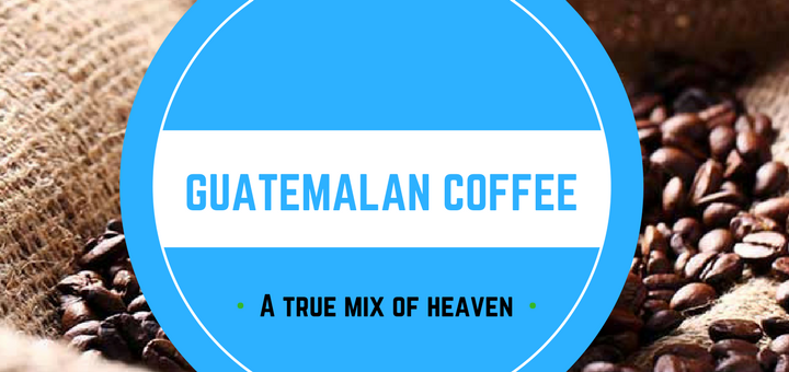 Guatemala coffee: find out more about history, farms, flavor, brands...